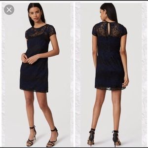 LOFT Navy Lace Dress